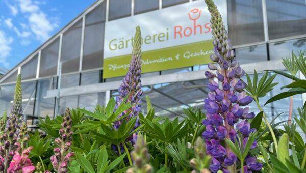 Gärtnerei Rohse